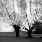 "monavida ""..."" (2016-03-23 12:15:59) komentarzy: 5, ostatni: z klimatem"