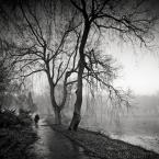 """DELF """"spacer we mgle"""" (2016-04-25 00:01:54) komentarzy: 19, ostatni: Czasem motywy banalne...uchwycone przez dobre oko,stanowi inny ,lepszy obraz ...który podziwem jest absolutnym."""