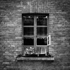 """ŁodzHudego """"Okno z widokiem."""" (2016-07-30 22:25:46) komentarzy: 5, ostatni: klasa, ciekawie uchwycona scena"""