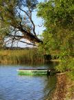 """Maciek Froński """"Jezioro Rajgrodzkie 2"""" (2016-09-27 15:32:07) komentarzy: 2, ostatni: Dzięki :)"""