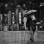 """andrzejbg """""""" (2016-10-18 08:26:55) komentarzy: 10, ostatni: fajnie siedzi w kadrze, tajemniczy mikołaj z parasolem, fajne poziome linie chodnika :)"""
