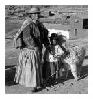 """andrzejbur """"Mama z córką i lamą ..."""" komentarzy: 4 (2016-12-02 22:33:54)"""