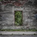"""Betty Kirsche """"Zielone drzwi"""" komentarzy: 12 (2016-12-11 19:02:00)"""