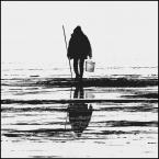 """shawrus """"człowiek lodu..."""" komentarzy: 7 (2017-01-24 17:55:25)"""