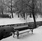 """donasz """"Zimą w parku"""" (2017-03-09 17:37:31) komentarzy: 6, ostatni: podoba (odnoszę wrażenie lekkiego przeostrzenia gałęzi na pierwszym planie - ale to w sumie drobiazg :) )"""