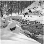 """barszczon """"wiosenny atak zimy w Kościeliskej..."""" komentarzy: 9 (2017-04-27 10:56:51)"""