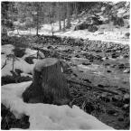 """barszczon """"zimowy (jeszcze) atak wiosny w Kościeliskiej..."""" komentarzy: 7 (2017-04-27 11:05:26)"""