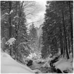"""barszczon """"wiosenny atak zimy"""" komentarzy: 14 (2017-05-04 18:56:26)"""