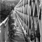 """barszczon """"Most na rzece San..."""" komentarzy: 11 (2017-06-15 12:05:59)"""