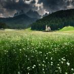 "nienar ""St. Johan"" komentarzy: 13 (2017-06-17 20:37:54)"