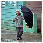 """papajedi """"Śpiewając w deszczu"""" komentarzy: 6 (2017-06-27 20:37:42)"""