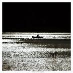 """papajedi """"na przekór słońcu"""" (2017-07-18 18:51:06) komentarzy: 7, ostatni: pływanie po płynnym srebrze."""
