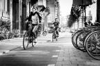 """adam_bylina """"Kawałek Holandii"""" (2017-07-20 13:44:20) komentarzy: 5, ostatni: db./"""