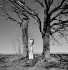 """xemily """"#"""" (2017-08-06 23:01:04) komentarzy: 4, ostatni: dramatycznie w cieniach tych drzewach,  płasko na kapliczce :P"""