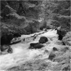 """barszczon """"gdzieś w Tatrach..."""" (2017-09-29 16:36:23) komentarzy: 6, ostatni: :) zupełnie jakbyś """"znała"""" to miejsce i ten potok :) W dodatku - woda jest bezlitosna... dzięki :)"""