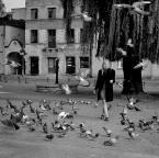 """asiasido """"Dziewczyna i gołębie 3"""" (2017-10-10 18:08:01) komentarzy: 0, ostatni:"""