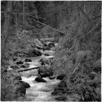 """barszczon """"gdzieś w Tatrach"""" (2017-10-16 18:52:01) komentarzy: 0, ostatni:"""