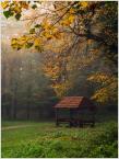 """Wołodytjowski """"jesień nieśmiało się wkrada"""" (2017-10-23 23:34:43) komentarzy: 0, ostatni:"""
