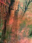 """Kasiadzie """"Drzewo w płocie"""" komentarzy: 2 (2017-10-26 17:44:26)"""