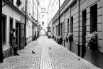 """BigLebowski """"Street."""" (2017-10-28 16:51:19) komentarzy: 5, ostatni: b. ładne :)"""