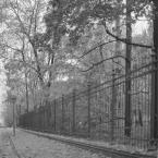 """barszczon """"to już jesień..."""" (2017-11-03 16:22:30) komentarzy: 0, ostatni:"""