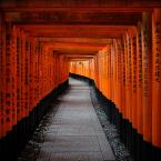 "Meller ""Fushimi Inari-taisha"" (2017-11-06 20:33:18) komentarzy: 4, ostatni: Bardzo ładnie..."