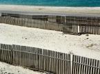 """tevye """"Przekładaniec"""" (2017-11-26 15:56:50) komentarzy: 2, ostatni: b. ładne, lubię płotki na plaży :)"""