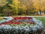 """baha7 """"jesienny park"""" komentarzy: 0 (2017-11-27 16:39:15)"""