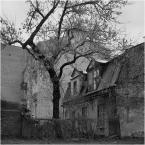 """barszczon """"drzewa w moim mieście..."""" (2017-12-11 13:30:26) komentarzy: 8, ostatni: Lubie takie miejsca oglądać i czuć. Niezwykle ciekawy zapis miasta, ileż tu kryje się opowieści i przeżyć ludzkich..."""