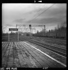 """miljo """"Zagnańsk, grudzień 2017"""" (2018-01-07 18:15:23) komentarzy: 10, ostatni: tak"""