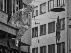 "terro ""Kobieta i parasol"" komentarzy: 1 (2018-01-09 19:46:14)"