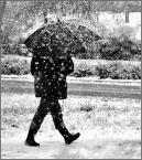 """donasz """"Pierwszy śnieg"""" (2018-01-17 18:01:38) komentarzy: 5, ostatni: Czasem dobrze skryć się pod parasolką"""