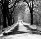 "Andrzej_J ""Droga powrotna"" komentarzy: 3 (2018-01-22 09:55:44)"