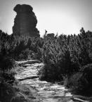 """xemily """""""" (2018-02-02 20:42:38) komentarzy: 2, ostatni: podoba mi się kadr : świetlista ścieżka + mroczna skała w tle :)"""