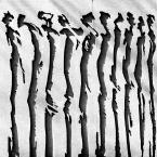 """macieknowak """"W szeregu"""" (2018-04-20 23:28:23) komentarzy: 16, ostatni: długo się w to wgapiam, taki test projekcyjny... intrygujący obraz,  ale rola fotografa jest tu czysto dokumentalna.."""