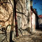 """Grzegorz Pawlak """"Lublin"""" komentarzy: 1 (2018-05-09 05:32:16)"""