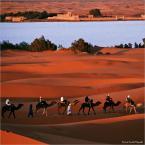 """papajedi """"Sahara"""" (2018-05-09 20:35:34) komentarzy: 10, ostatni: a podziękował  grzecznie ."""
