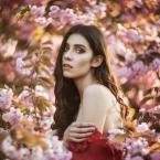 "John_Coffey ""Julia"" (2018-05-13 18:18:36) komentarzy: 4, ostatni: Piękne!"