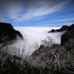 """Meller """"Spacer w chmurach..."""" (2018-06-16 19:28:14) komentarzy: 7, ostatni: ładnie w tym kadrze"""