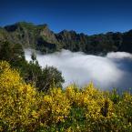 """Meller """"Góry, chmury... i kwiaty"""" (2018-07-10 21:53:19) komentarzy: 1, ostatni: extra wypełnienie :))))"""