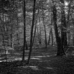 """tomcha """"Szczecin by Lubitel"""" (2018-09-14 22:24:20) komentarzy: 2, ostatni: b. ładne :)"""