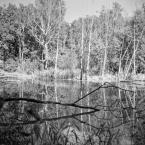 """tomcha """"Szczecin by Lubitel"""" (2018-09-15 11:37:10) komentarzy: 0, ostatni:"""